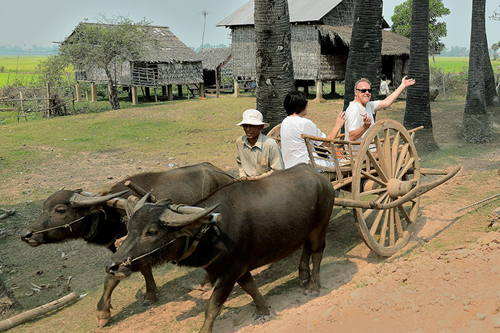 Countryside Village Oxcart Ride 4 700pixel