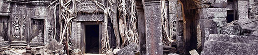 Ta Prohm Temple 031 526x114