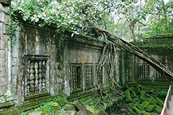 Beng Mealea Temple Adventure 7 250pixel