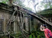 Beng Mealea Jungle Temple 02 800x600