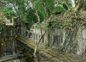 Beng Mealea Jungle Temple 07 800x600