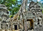 Ta Prohm Temple 06 800x600